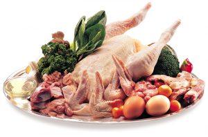 Chicken2b