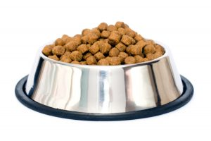 Tasty dog food (lamb and rice) in metal plate isolated on white